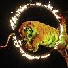 Цирки в Котельниче
